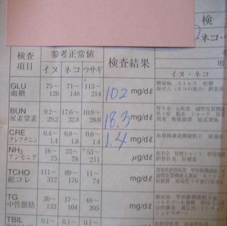20071209164853.jpg