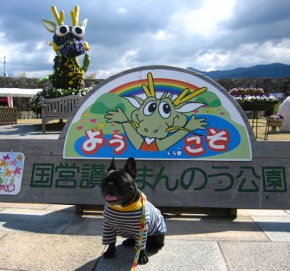 IMG_9650・搾シ狙convert_20090305112140