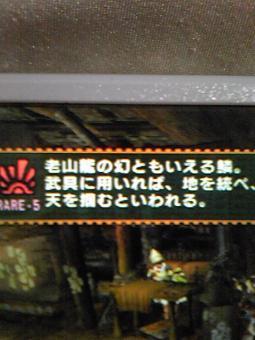 老山龍の天鱗convert_20090607025833