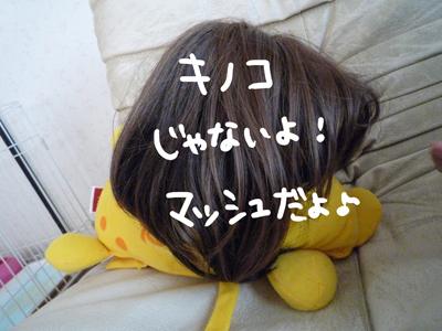 P1030665.jpg