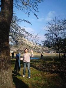 09429桜