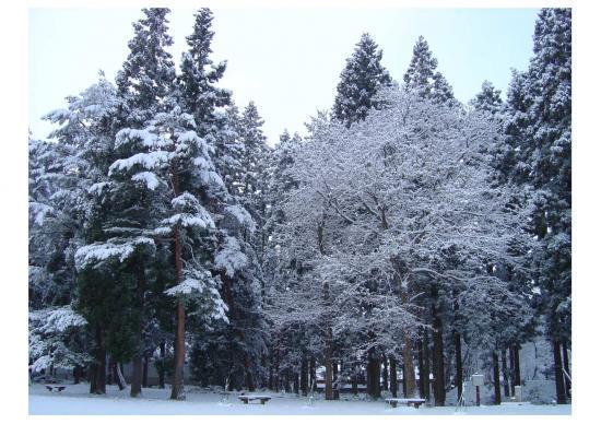 09327雪
