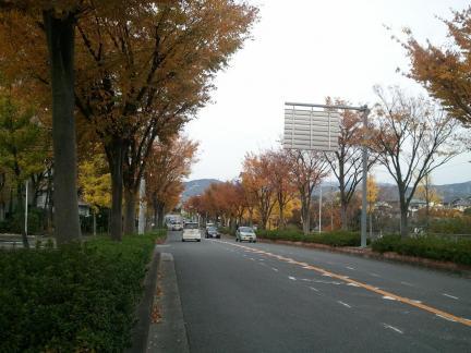 2011/11/27 高槻