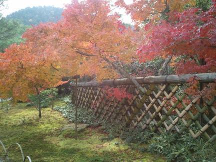 2011/11/27 光悦寺