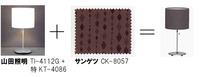 ts_pattern_R.jpg