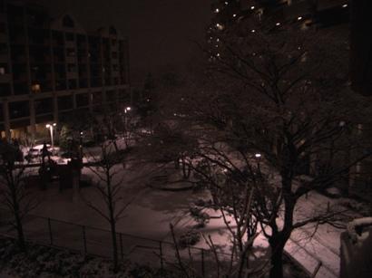 関東の雪1