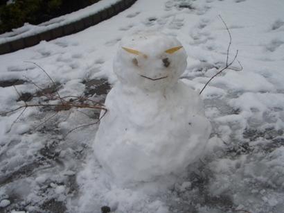 関東の雪4