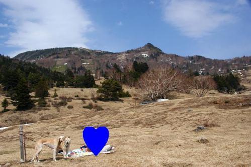 山田牧場2
