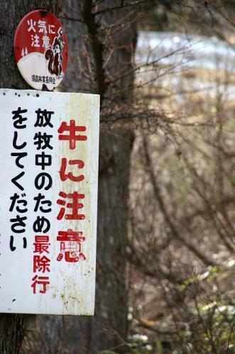 山田牧場7