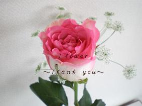 バラの花のコピー