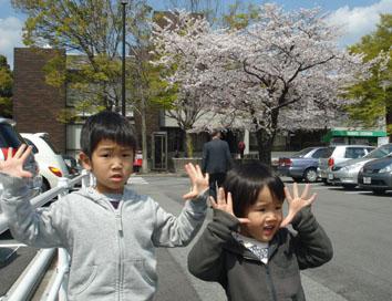 桜と子供達