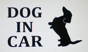 DOG IN CAR ダックス