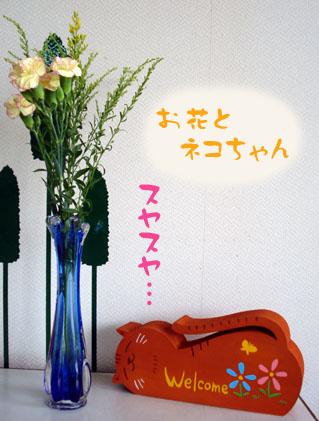 お花とネコちゃん