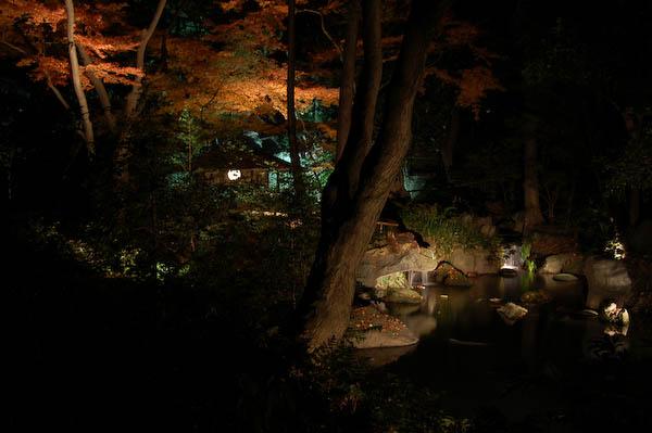 20081207_13.jpg