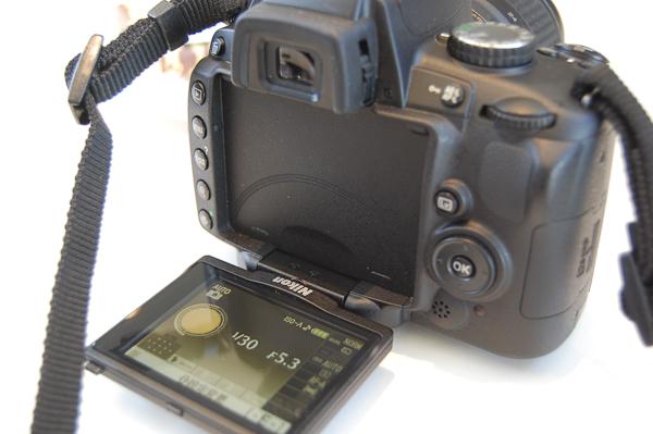 20090427_4.jpg