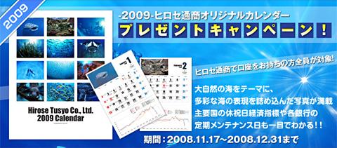 hirocal2009.jpg