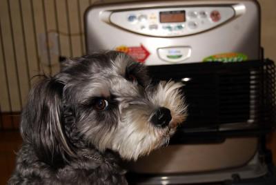 11-15-2009_052.jpg