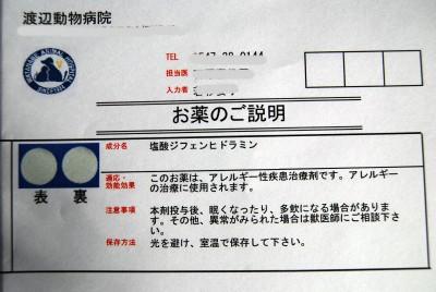 2_20091031175845.jpg