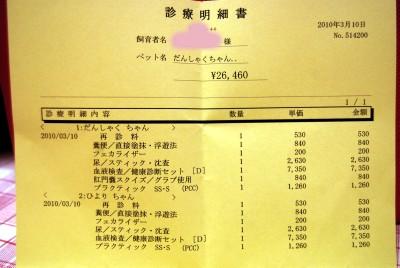 3-10-2010_016.jpg