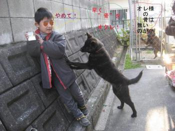 ブログ リラ 馨平 001