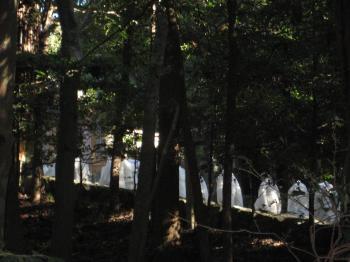 ブログ リラ 神宮 004