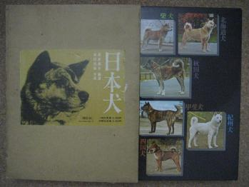 ブログ リラ 「日本犬」2 068