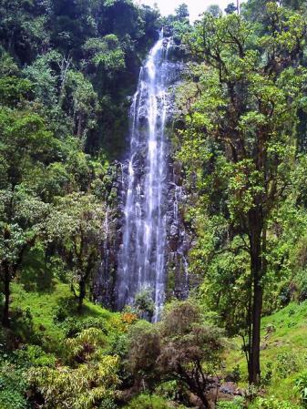 キリマンジャロの滝