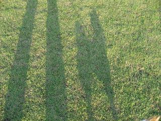 影が長~い