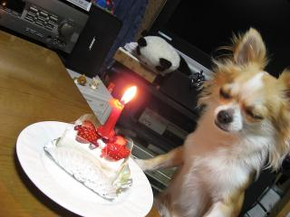 ケーキ・・・