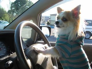 運転します。