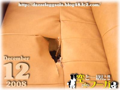 1202-3_20081201143249.jpg