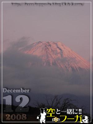 1212-14.jpg