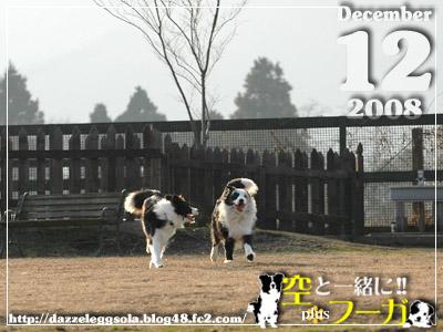 1212-5.jpg