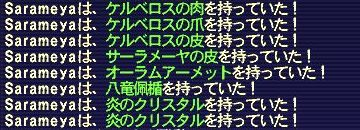 090315_Sarameya_5.jpg