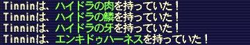 090405_Tinnin_1.jpg