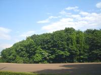 20050620-5.jpg