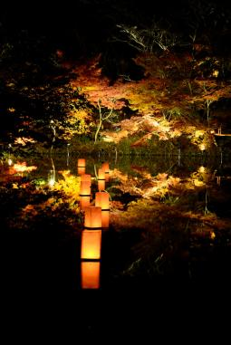 2011年11月27日御船山楽園 (67)