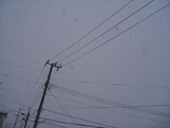 2008雪3