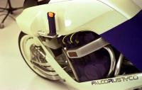 Falco10a-l.jpg