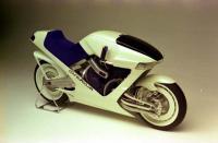 Falco2a-l.jpg