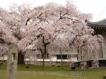 醍醐寺・霊宝館2