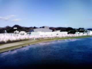 市役所遠景3