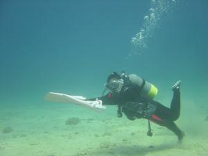 水中逆フィン