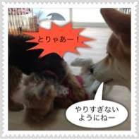 photo22.jpg