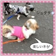 photo23.jpg