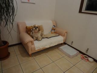 ソファー席にて♪