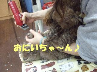 2008_12080033.jpg