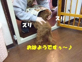 2009_01180034.jpg