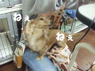 2009_01280011.jpg