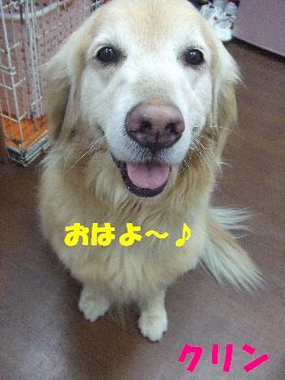 2009_02020006.jpg